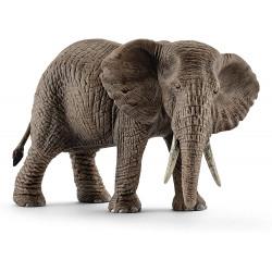 Elefante Africano Hembra...