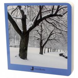 Libro del invierno sin...
