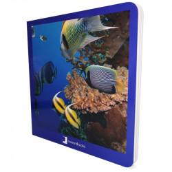 Libro de Animales marinos...