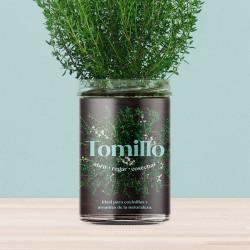 Huerto de cocina de Tomillo