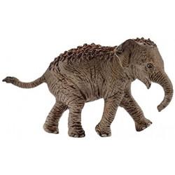 Cría de elefante asiático...