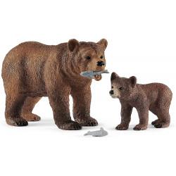 Mamá Osa Grizzly con cría...