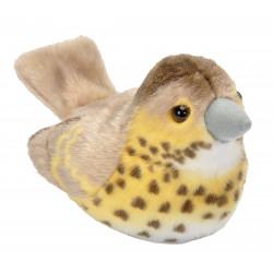 Pájaro con sonido Tordo