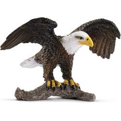 Águila calva americana...